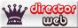 Director Web Online