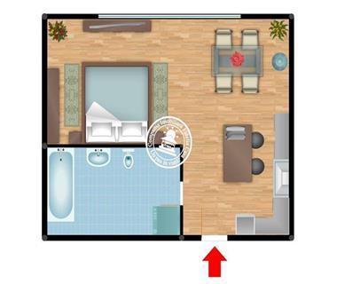 apartament 1 camera  de inchiriat  cantemir Iasi