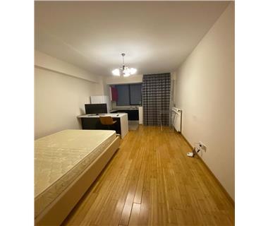 apartament 1 camera  de inchiriat  copou Iasi