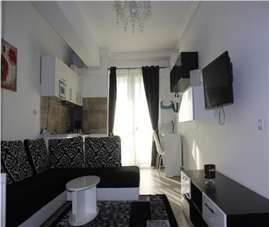 Apartament 1 camera  de vanzare  Centru - Sfantul Lazar,