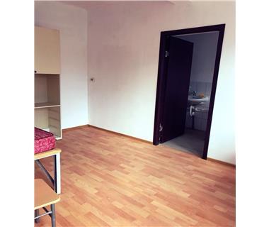 Apartament 5+ camere  de vanzare  Tomesti,