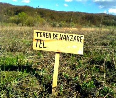 Teren pentru constructii case  de vanzare Iasi, Valea Ursului,