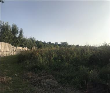 Teren pentru constructii case  de vanzare Iasi, Vladiceni,